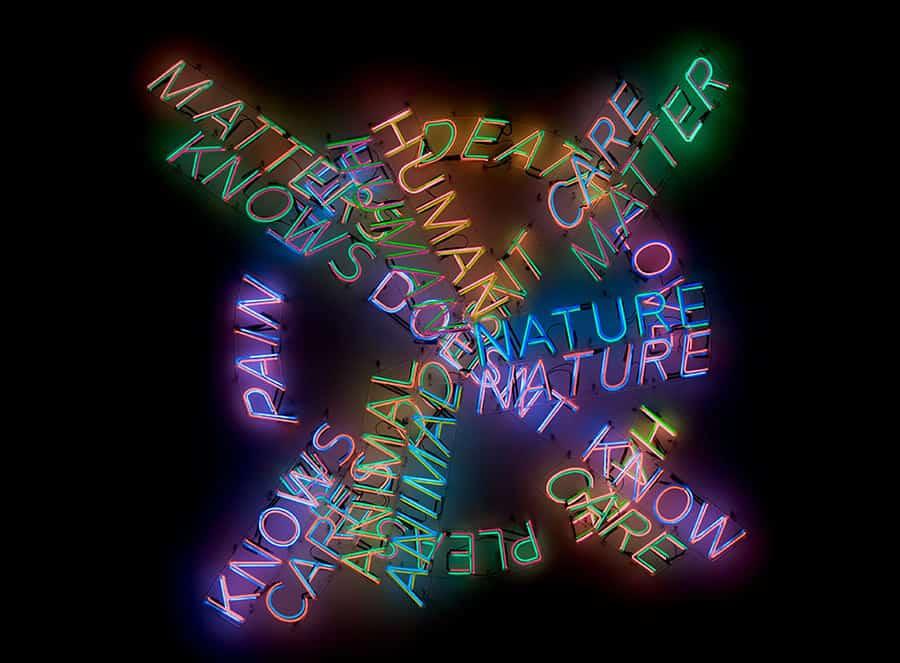 Bruce Nauman Retrospective at MoMA & PS1