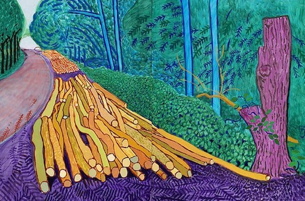 Hockney meets Van Gogh
